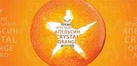 Проекты ТГПУ вошли в список победителей 17-го конкурса «Хрустальный Апельсин»