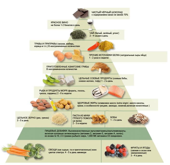 Питание человека основы потребления пищи реферат 6776